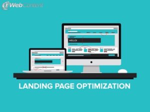 Work with an experienced team to develop the best landing pages.